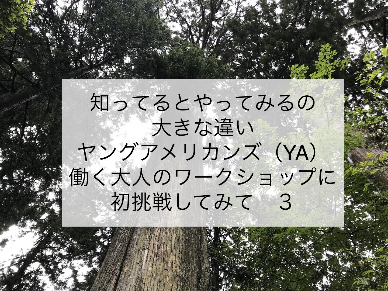ヤングアメリカンズ(YA) 働く大人のワークショップに初挑戦してみて 3